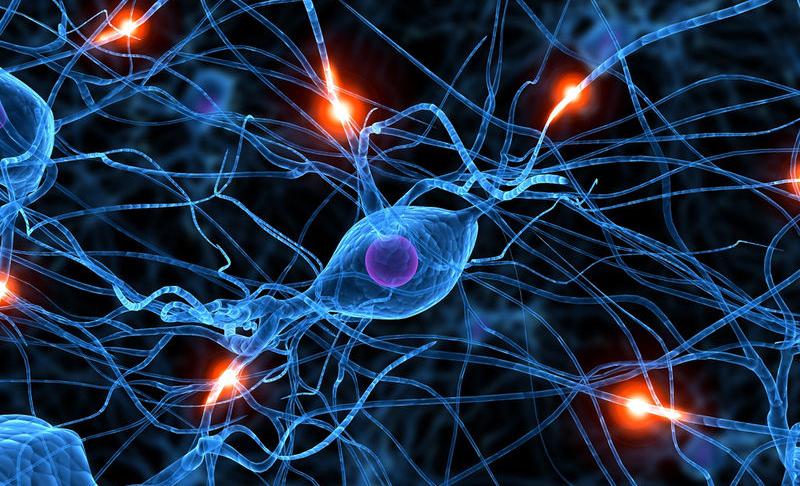 Soru Yoran Beyinler – Miraç MeriçAyal